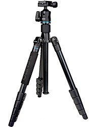 cheap -Carbon Fibre 415mm 5 sections Digital Camera Monopod