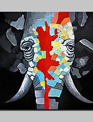 pinturas pintadas à mão pinturas a óleo de elefante em tela foto abstrata moderna de arte de parede