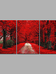 cheap -Rolled Canvas Prints Landscape Fantasy Modern, Three Panels Canvas Horizontal Print Wall Decor Home Decoration