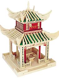 Недорогие -Пазлы Деревянные пазлы Строительные блоки DIY игрушки Сфера Китайская архитектура 1 Дерево Со стразами Модели и конструкторы