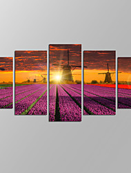 VISUAL STAR®Holland Windmill Picture Giclee Artwork 5 Panels Modern Home Wall Decoration Framed Canvas Print Ready to Hang