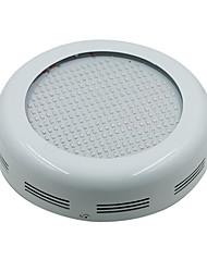 cheap -100W LED Grow Lights 277 SMD 5730 13850-15000 lm Warm White UV (Blacklight) Red Blue AC85-265 V 1 pcs