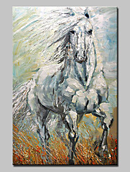 Hand-Painted Modern Abstract Animal Oil Painting On Canvas A White Horse Wall Art Picture For Home Decoration Ready To Hang