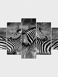 economico -Stampe a tela Animali Modern,Cinque Pannelli Tela Qualsiasi forma Stampa artistica Decorazioni da parete For Decorazioni per la casa