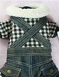 Chien Manteaux Combinaison-pantalon Vêtements pour Chien Sportif Solide Arc-en-ciel Costume Pour les animaux domestiques