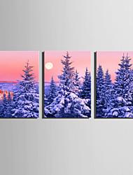 Пейзаж Цветочные мотивы/ботанический Modern,3 панели Холст Вертикальная Печать Искусство Декор стены For Украшение дома
