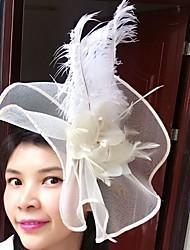 Pena Rede Fascinador Chapéus Véus de Rede Capacete