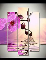preiswerte -Druck Gerollte Leinwand - Blumenmuster / Botanisch Klassisch