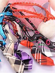 Cachorro Gravata/Gravata Borboleta Roupas para Cães Terylene Verão Casual Flôr Arco-Íris Ocasiões Especiais Para animais de estimação