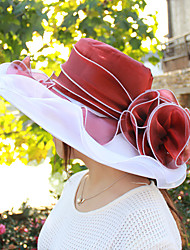 abordables -Mujer Primavera Verano Bonito Casual Poliéster Malla Sombrero Playero Sombrero para el sol