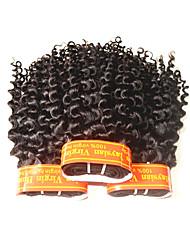 Недорогие -Натуральные волосы Пряди натуральных волос Реми Кудрявый Малазийские волосы 300 g 1 год