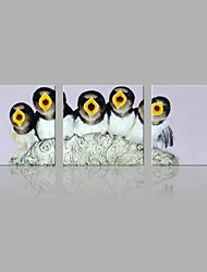 IARTS Oil Painting Modern Abstract Little Birds Are Hungry Set of 3 Art Acrylic Canvas Wall Art For Home Decoration