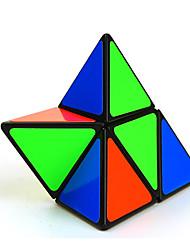 abordables -Shengshou Cubes Magiques Jouets Education Carré Pièces Enfant Adulte Cadeau