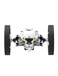 Parrot Buzz Buggy Brush Electric RC Car 2.4G Some Assembly RequiredRemote Controller/Transmmitter Remote Control Car 1 x Battery 1 x