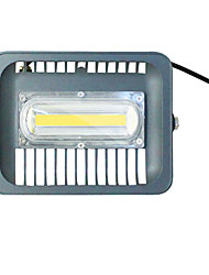 cheap -50W LED Floodlight Waterproof Lawn Outdoor Lighting Cold White 220V