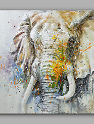 Hand-Painted The Elephant Animal Modern Canvas Oil Painting For Home Decoration