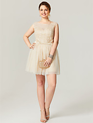 cheap -A-Line Scoop Neck Short / Mini Tulle Cocktail Party Homecoming Dress with Appliques Sash / Ribbon by TS Couture®