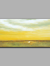 Hand-Painted Abstract Horizontal Modern/Contemporary One Panel Canvas Oil Painting For Home Decoration No Frame