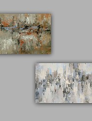 100% Hang-Painted Abstract  Modern / Classic Two Panels Canvas Oil Painting For Home Decoration