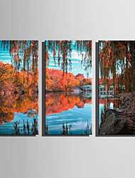 cheap -E-HOME Stretched Canvas Art The Park Scene In Late Autumn Decoration Painting Set Of 3