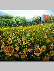 cheap -Big Size Hand-Painted Sunflower Garden Oil Paintings On Canvas Wall Art Picture For Home Decoration No Frame