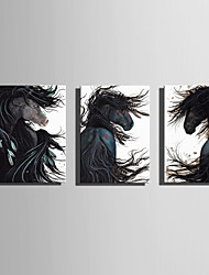 E-HOME Stretched Canvas Art  Black Horses That Look Back Decoration Painting Set Of 3