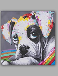 Hand-Painted Animal Square,Formal Artistic Style Artistic Classic Style One Panel Canvas Oil Painting For Home Decoration