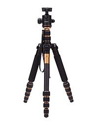 Fibra de Carbono Secções Nikon Sony Canon Tripê