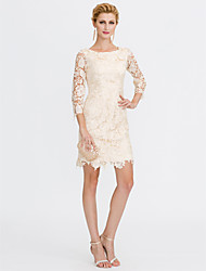 cheap -Sheath / Column Scoop Neck Knee Length All Over Lace Mother of the Bride Dress with Lace by LAN TING BRIDE®