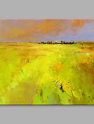 Peint à la main Abstrait Format Horizontal,Artistique Un Panneau Toile Peinture à l'huile Hang-peint For Décoration d'intérieur