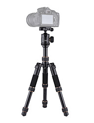 Andoer TP166A Portable Lightweight Aluminum Alloy Table Mini Tripod with Ball Head Kit 3-Section Adjustable Height Fold Only 21cm for Canon Nikon