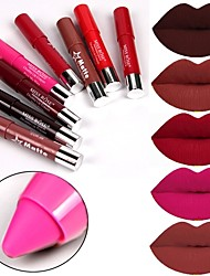 Lipstick Matte Mineral N/A Waterproof Solid Cosmetic Beauty Care Makeup for Face