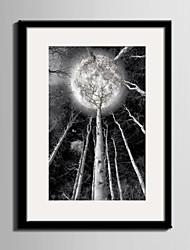 baratos -Quadros Emoldurados Conjunto Emoldurado Paisagem Lazer Botânico Arte de Parede, PVC Material com frame Decoração para casa Arte Emoldurada