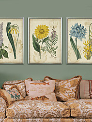 cheap -Floral/Botanical Vintage Illustration Wall Art,PVC Material With Frame For Home Decoration Frame Art Living Room Kitchen Dining Room