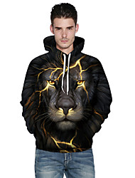 Men's Plus Size Sports Outdoor Daily Active Hoodie 3D Print Hooded Hoodies Inelastic Polyester Long Sleeves Fall