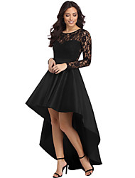 cheap -Women's Party Sexy Lace Dress,Solid Round Neck Asymmetrical Long Sleeve Polyester Elastane Winter High Waist Micro-elastic Translucent