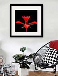 baratos -Floral/Botânico Ilustração Arte de Parede,Plástico Material com frame For Decoração para casa Arte Emoldurada Sala de Estar Interior