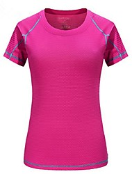 cheap -Women's Hiking T-shirt Outdoor Quick Dry Breathability Lightweight T-shirt Camping / Hiking Multisport Bike/Cycling Back Country
