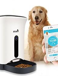 economico -5 L Prodotti per cani Prodotti per gatti Animali domestici Mangiatoie Animali domestici Ciotole e alimentazione Macchina fotografica
