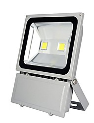 cheap -1pc 100W LED Floodlight Waterproof Decorative Outdoor Lighting Cold White 85-265V