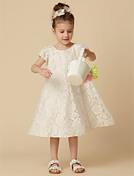 cheap -Sheath / Column Knee Length Flower Girl Dress - Lace Short Sleeves Scoop Neck with Lace by LAN TING BRIDE®