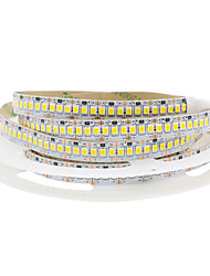 cheap -1x5M Flexible LED Light Strips 240 LEDs Warm White / Cold White Cuttable / Decorative / Linkable 12 V 1pc