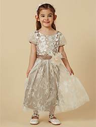 cheap -A-Line Knee Length Flower Girl Dress - Lace Short Sleeve Scoop Neck with Sash / Ribbon / Flower by LAN TING BRIDE®