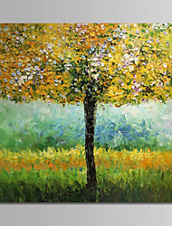 abordables -Pintura al óleo pintada a colgar Pintada a mano - Floral / Botánico Vintage Lona
