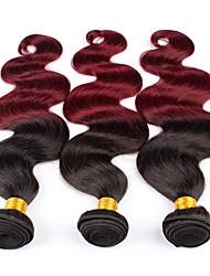 Недорогие -3 Связки Бразильские волосы Прямой Натуральные волосы Омбре 10-26 дюймовый Разноцветный Ткет человеческих волос Машинное плетение Для вечеринок / Женский / Натуральный Расширения человеческих волос