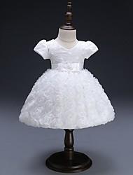 Недорогие -малыш Девочки Цветочный принт / Жаккард С короткими рукавами Платье