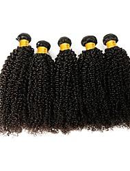 Недорогие -6 Связок Индийские волосы / Африканские косы Kinky Curly Натуральные волосы / Необработанные натуральные волосы Подарки / Косплей Костюмы / Человека ткет Волосы 8-28 дюймовый Естественный цвет