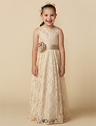 cheap -A-Line Floor Length Flower Girl Dress - Lace Sleeveless Jewel Neck with Sash / Ribbon / Flower by LAN TING BRIDE®