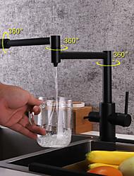 Недорогие -кухонный смеситель - Две ручки одно отверстие Окрашенные отделки Стандартный Носик / Горшок Filler Настольная установка Современный Kitchen Taps