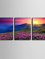 Недорогие -С картинкой Роликовые холсты Отпечатки на холсте - Пейзаж Природа Modern 3 панели